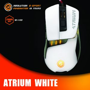 ปก Atrium White-Recovered