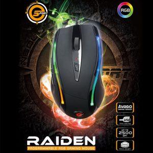 raidenn